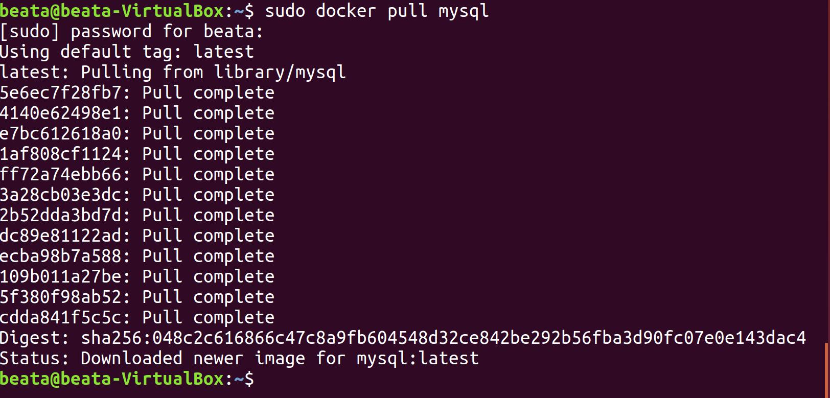 Docker i phpMyAdmin zdj.2