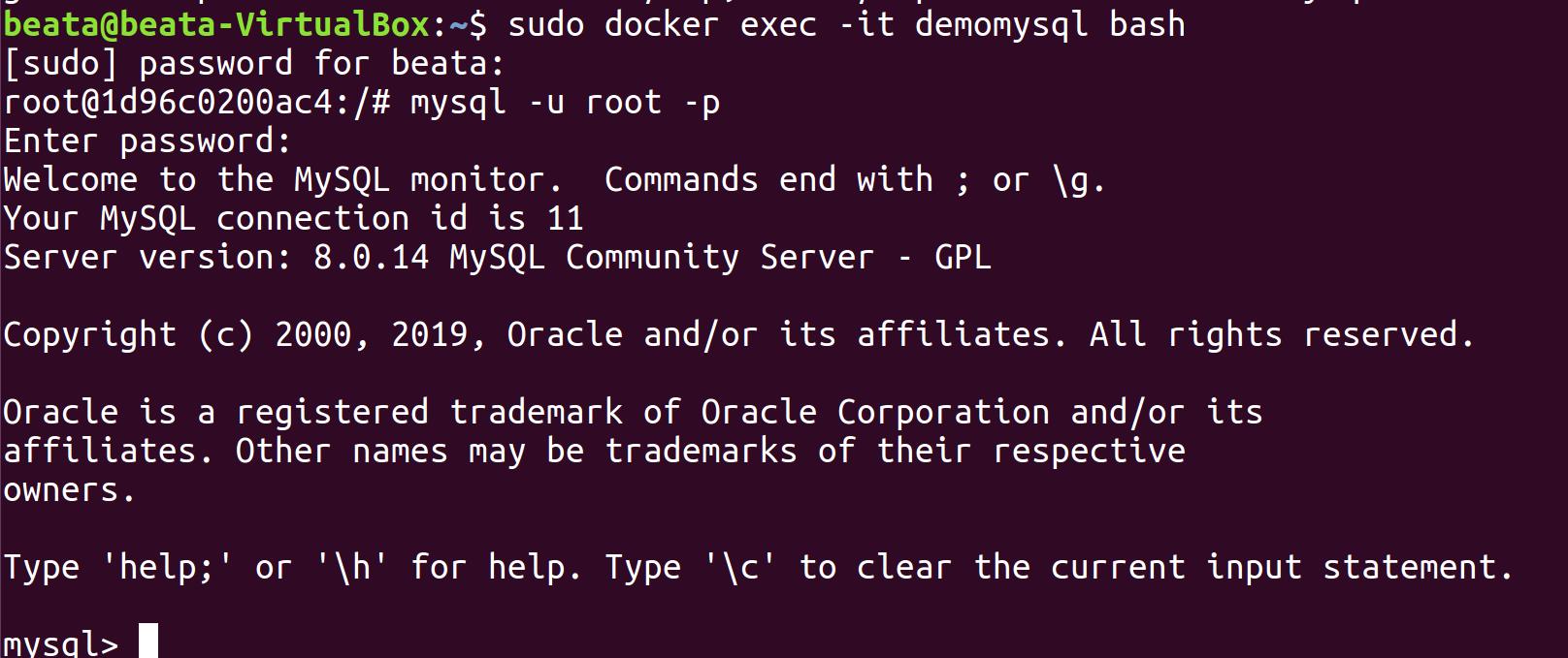 Docker i phpMyAdmin zdj.8